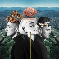 Clean Bandit - What Is Love? (Deluxe Edition) (2 x Vinyl) [ LP ]