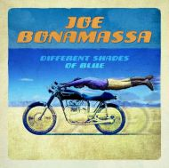 Joe Bonamassa - Different Shades Of Blue [ CD ]