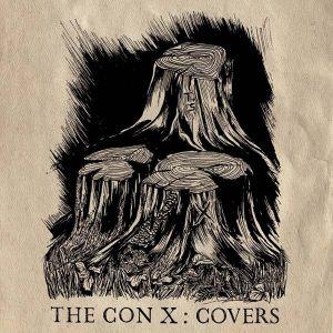 Tegan And Sara - The Con X: Covers (Vinyl) [ LP ]