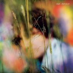 Sam Amidon - Sam Amidon [ CD ]